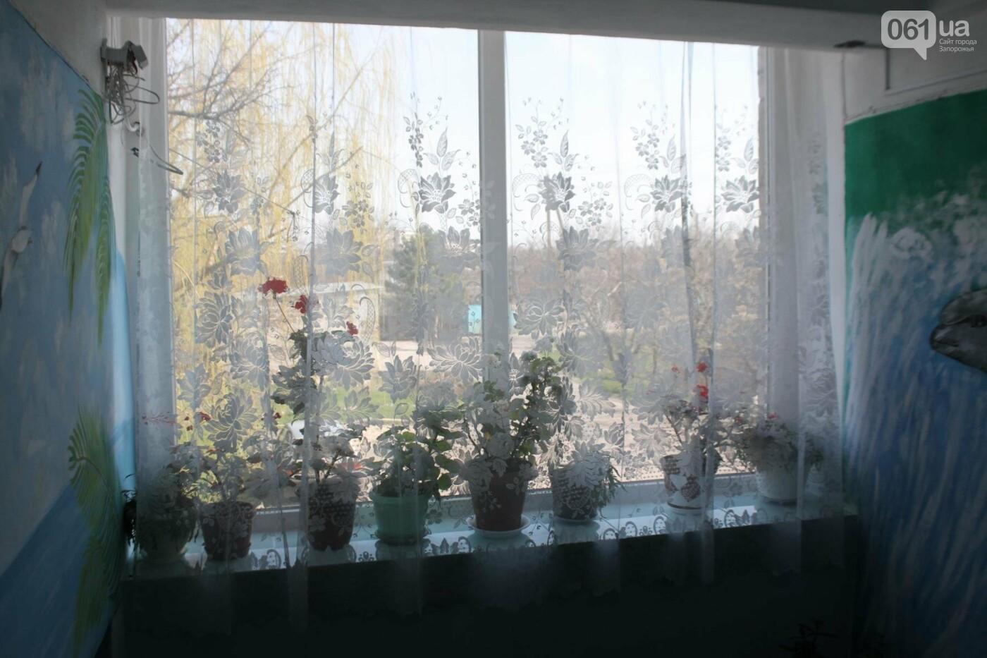 Запорожская громада, которую знают во всей Украине: каких успехов добилась Веселовская ОТГ, – ФОТОРЕПОРТАЖ, фото-24