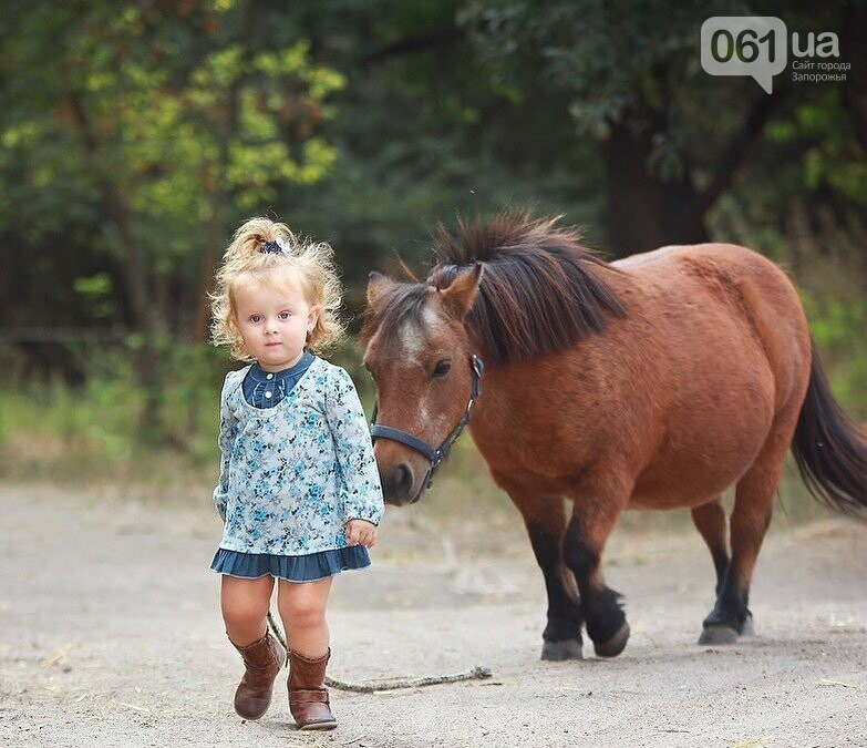 Незабываемое общение с лошадьми: экскурсия в конноспортивный клуб «Патриот», – ФОТОРЕПОРТАЖ, фото-30