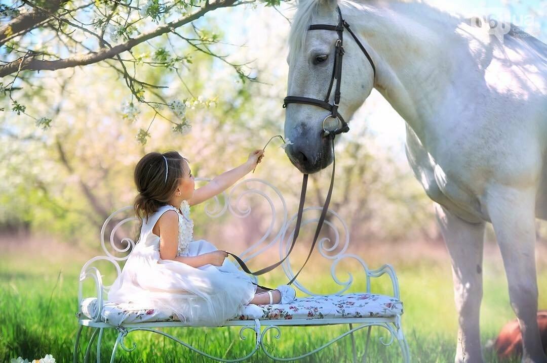 Незабываемое общение с лошадьми: экскурсия в конноспортивный клуб «Патриот», – ФОТОРЕПОРТАЖ, фото-36