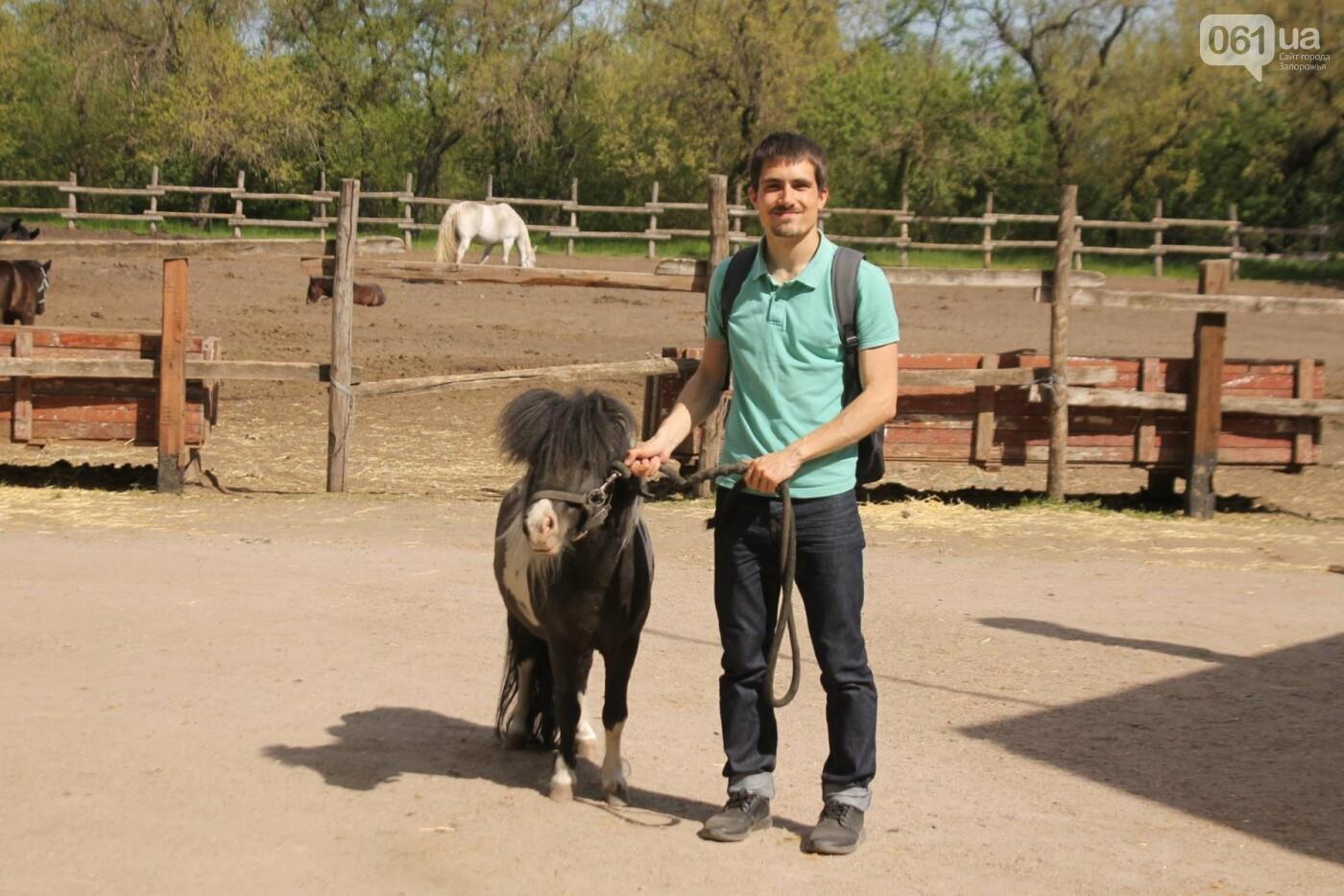 Незабываемое общение с лошадьми: экскурсия в конноспортивный клуб «Патриот», – ФОТОРЕПОРТАЖ, фото-25