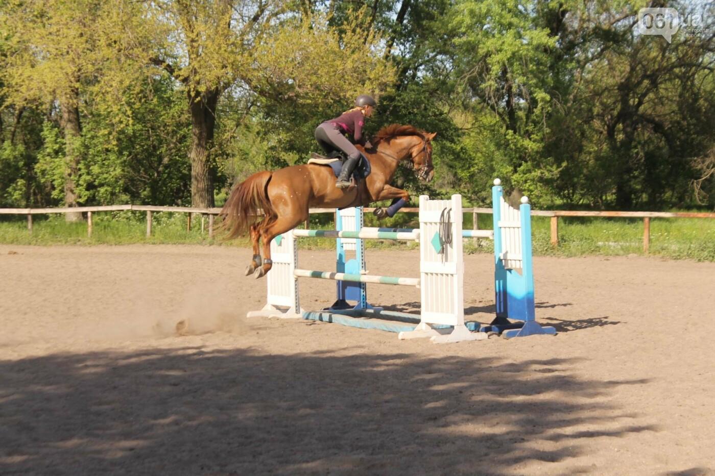 Незабываемое общение с лошадьми: экскурсия в конноспортивный клуб «Патриот», – ФОТОРЕПОРТАЖ, фото-14