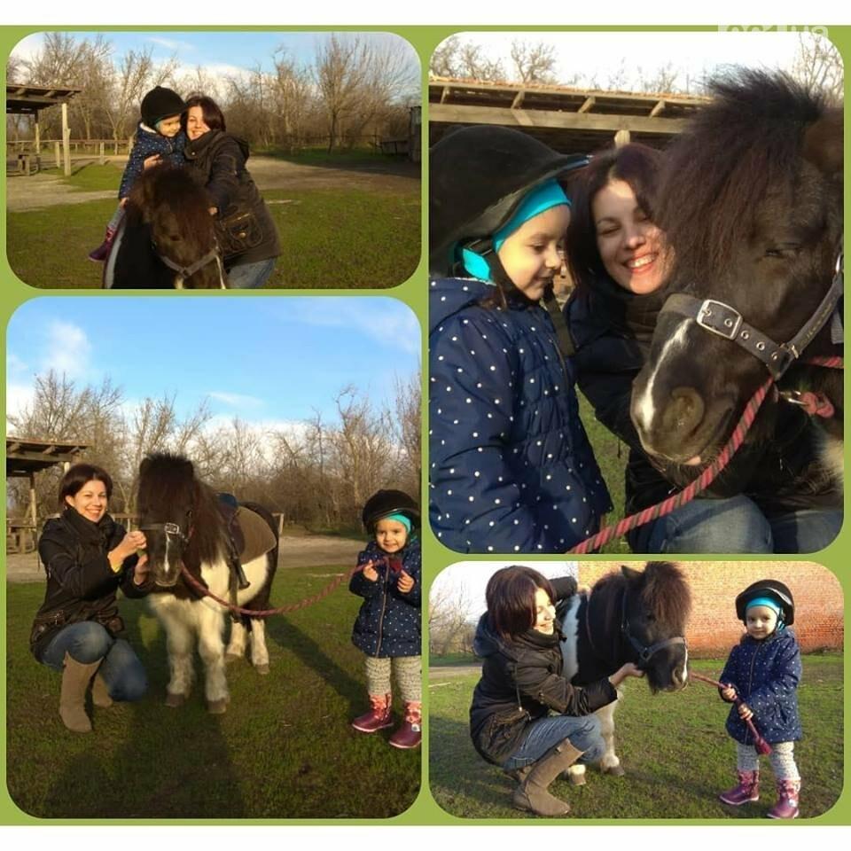 Незабываемое общение с лошадьми: экскурсия в конноспортивный клуб «Патриот», – ФОТОРЕПОРТАЖ, фото-19