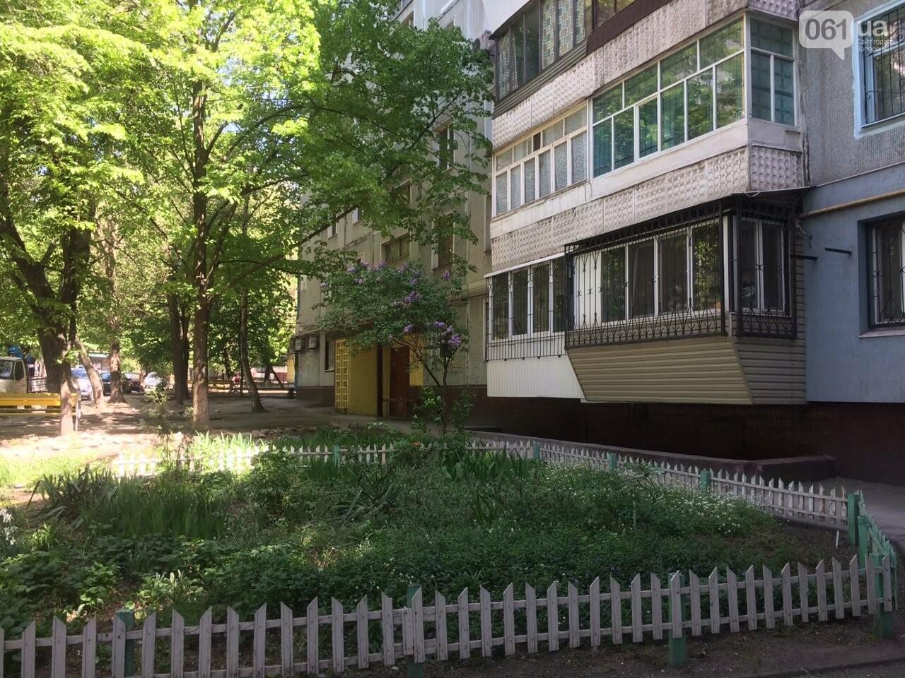 Председатель ОСМД: «С тарифами «Наш Дом Запорожье» мне не стыдно перед жильцами дома», фото-1