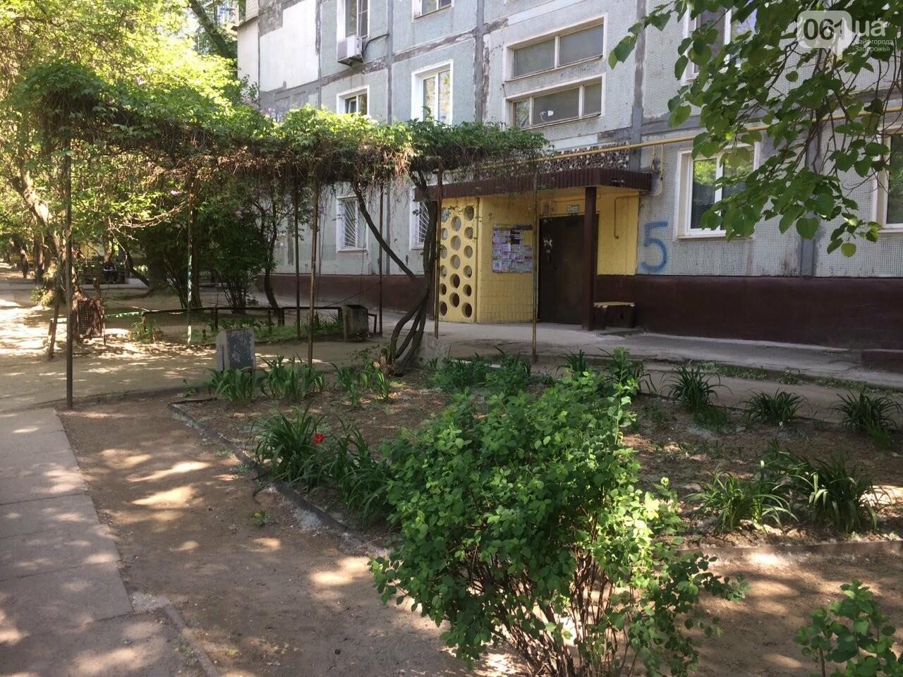 Председатель ОСМД: «С тарифами «Наш Дом Запорожье» мне не стыдно перед жильцами дома», фото-4