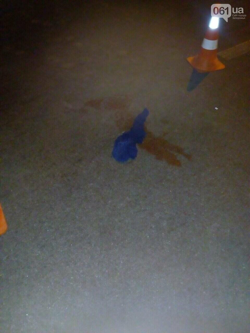 В Запорожье в Заводском районе сбили мужчину, фото-1
