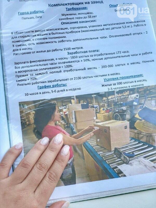 «За границей запорожцы могут найти работу в любой сфере»: директор кадрового агентства о востребованных вакансиях, «подводных камнях» и уло..., фото-7