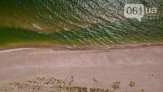 Бердянская коса с высоты птичьего полета, - ФОТО, фото-5