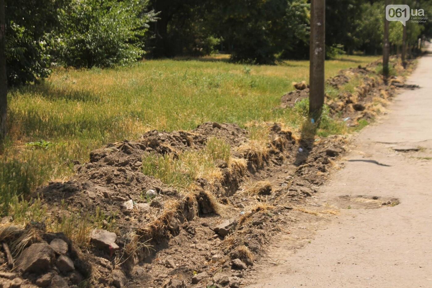 На Якова Новицкого в Запорожье возобновили реконструкцию пешеходной аллеи: обещают закончить до конца лета, – ФОТОРЕПОРТАЖ, фото-16