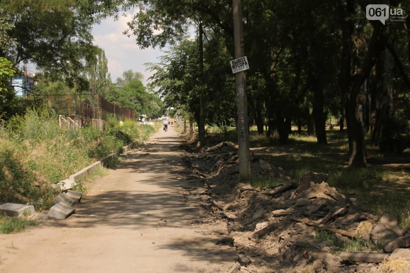 На Якова Новицкого в Запорожье возобновили реконструкцию пешеходной аллеи: обещают закончить до конца лета, – ФОТОРЕПОРТАЖ, фото-2