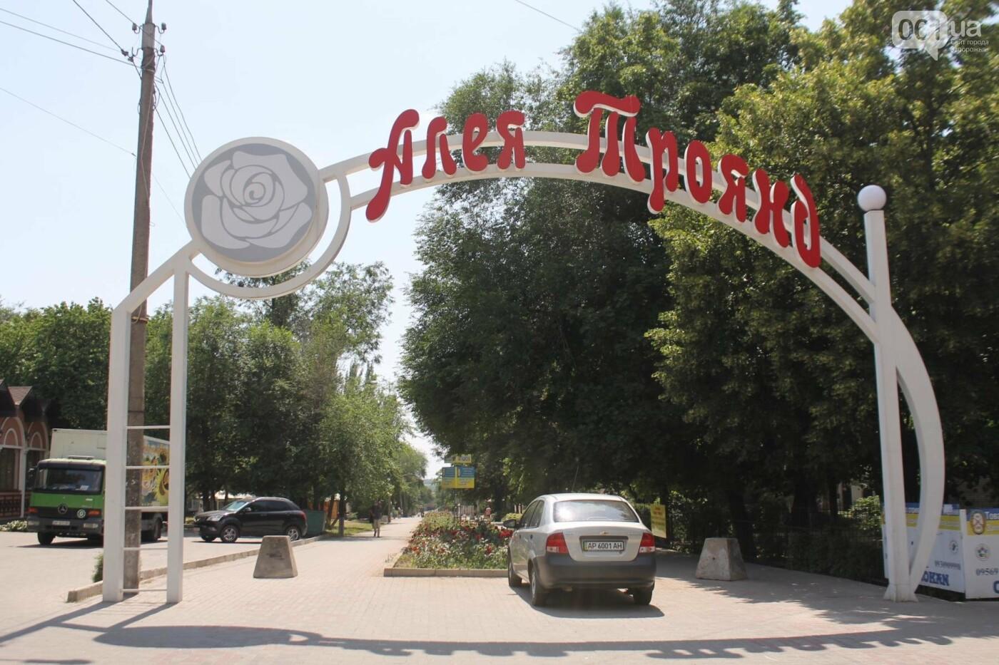 На Якова Новицкого в Запорожье возобновили реконструкцию пешеходной аллеи: обещают закончить до конца лета, – ФОТОРЕПОРТАЖ, фото-1