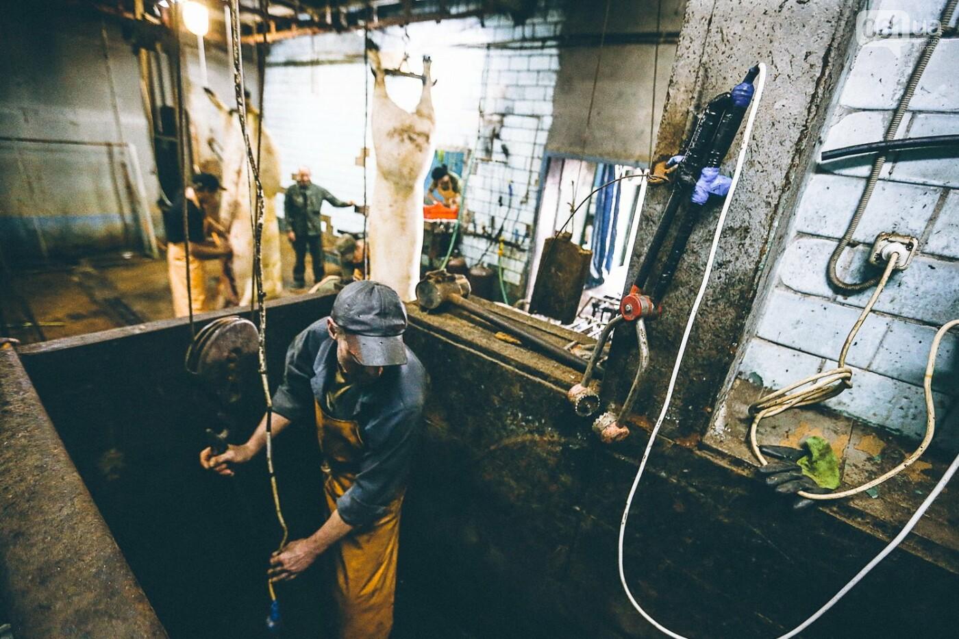 Забой скота в Украине приходит к европейским стандартам - ФОТОРЕПОРТАЖ 18+, фото-5