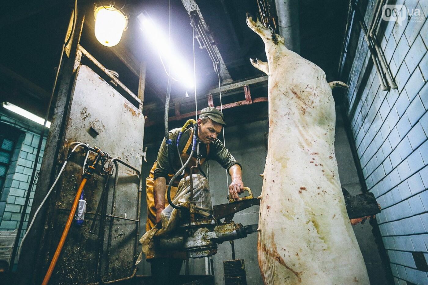 Забой скота в Украине приходит к европейским стандартам - ФОТОРЕПОРТАЖ 18+, фото-13