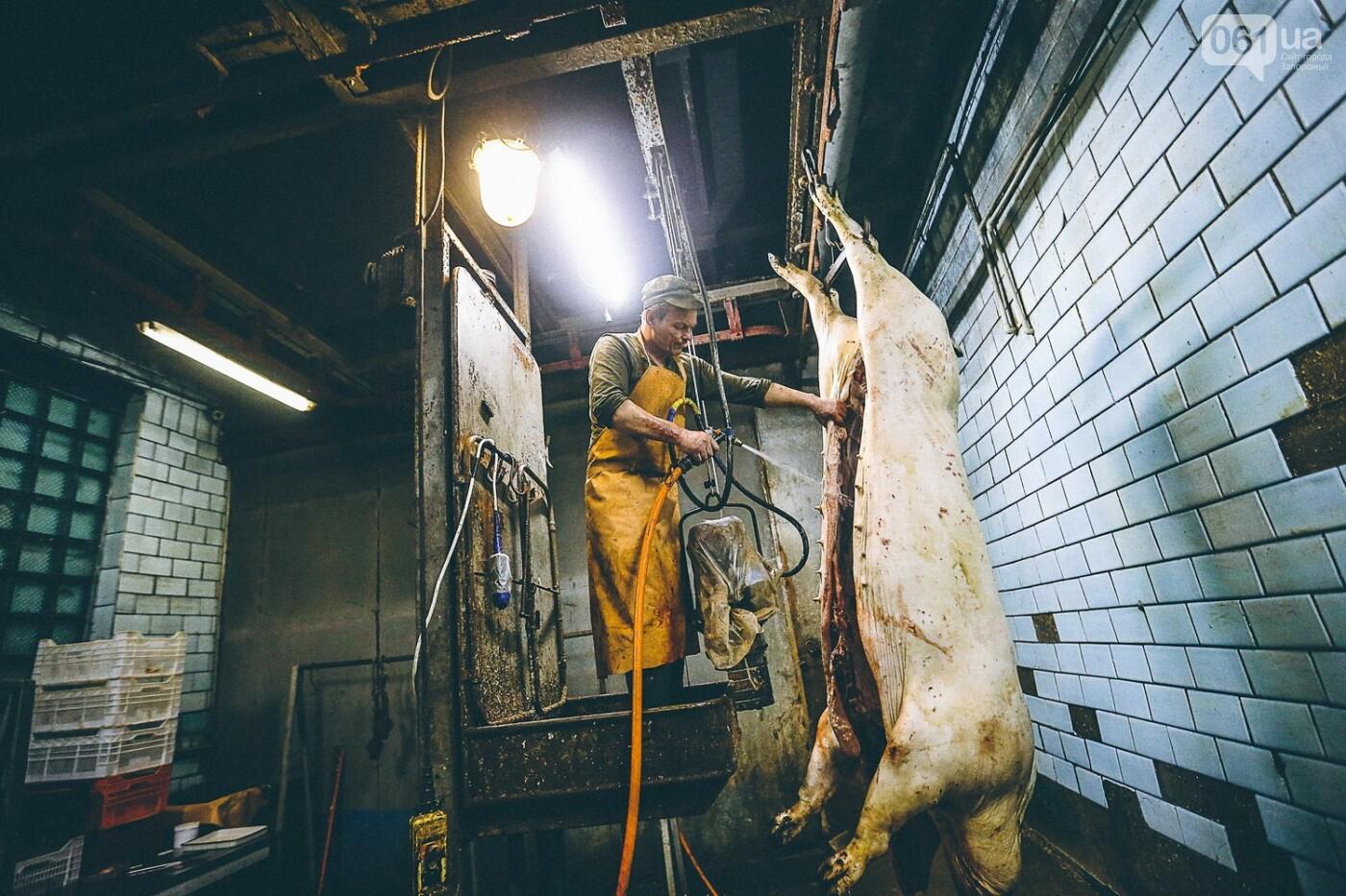 Забой скота в Украине приходит к европейским стандартам - ФОТОРЕПОРТАЖ 18+, фото-14