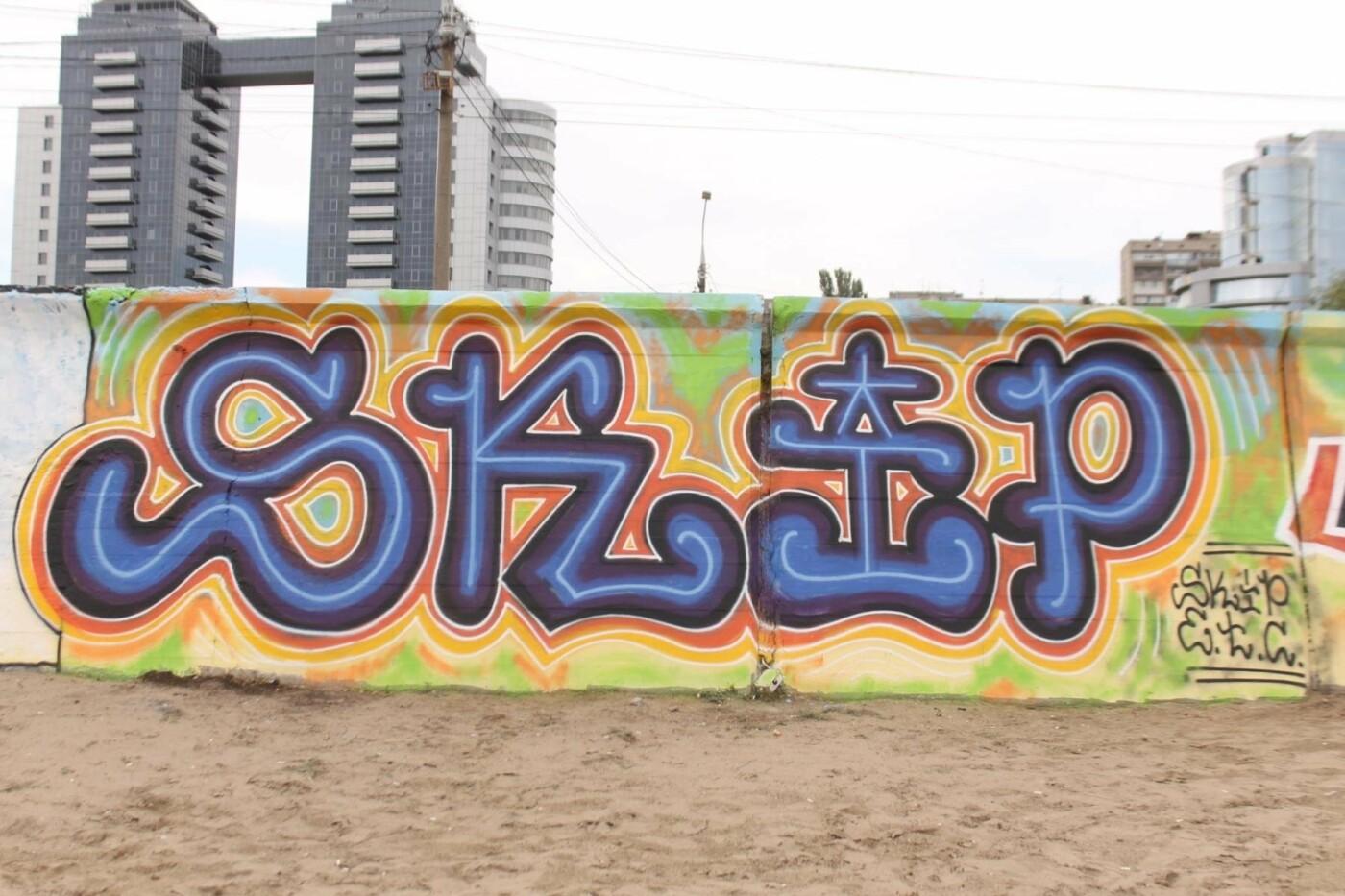 В Запорожье на пляже закончился фестиваль граффити: разрисовали 150 метров бетонной стены, – ФОТОРЕПОРТАЖ, фото-5