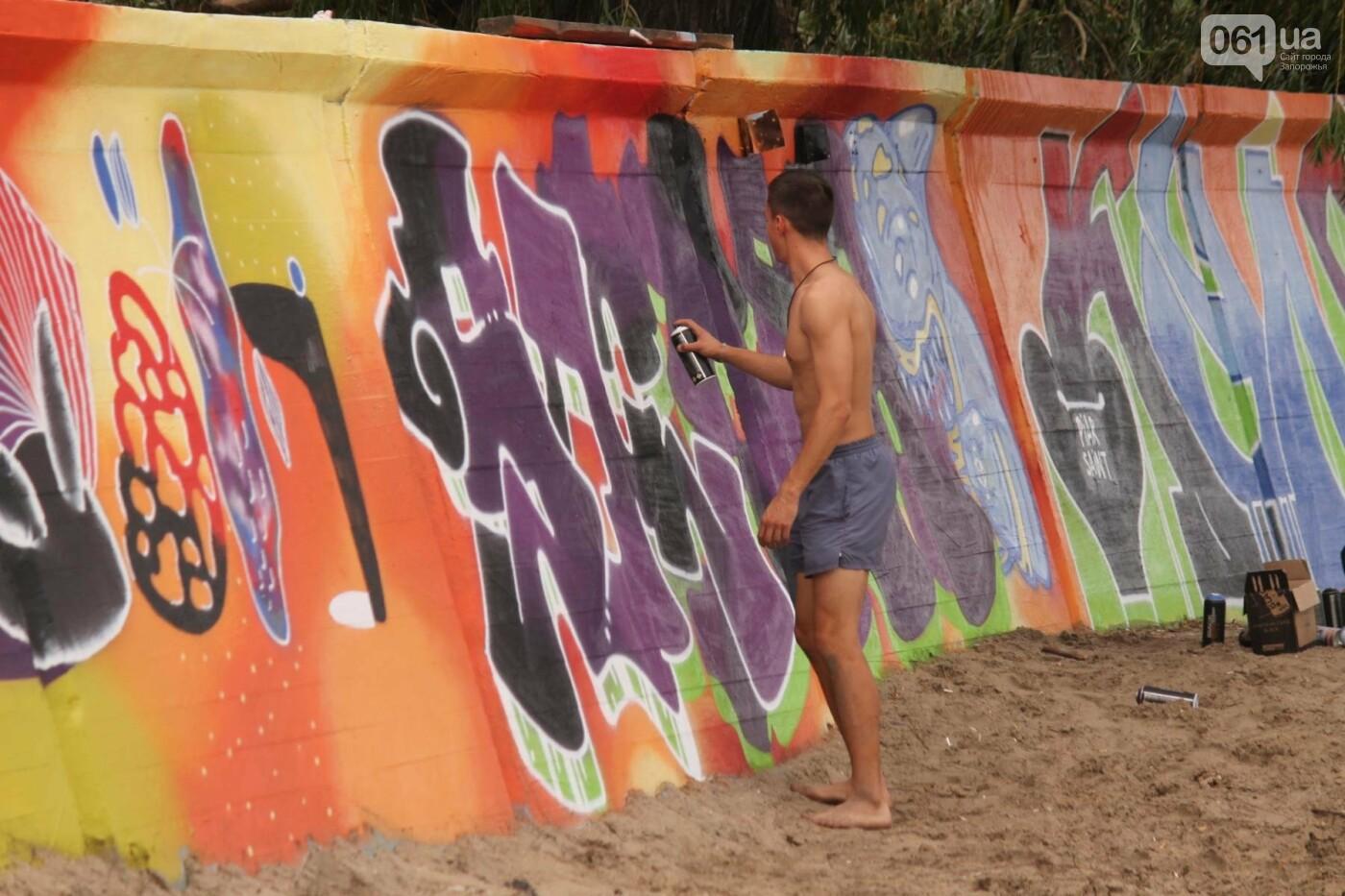 В Запорожье на пляже закончился фестиваль граффити: разрисовали 150 метров бетонной стены, – ФОТОРЕПОРТАЖ, фото-9