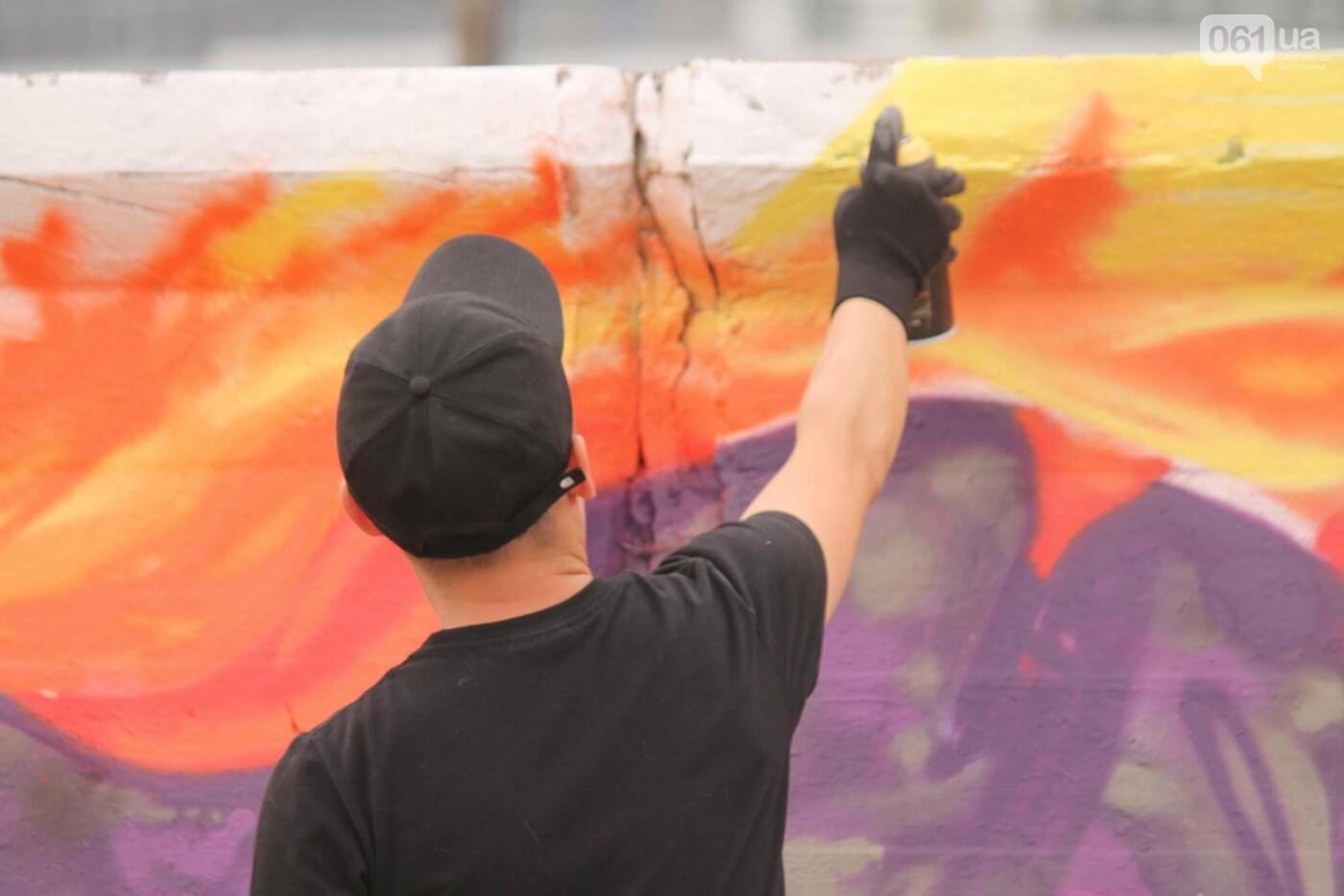 В Запорожье на пляже закончился фестиваль граффити: разрисовали 150 метров бетонной стены, – ФОТОРЕПОРТАЖ, фото-1