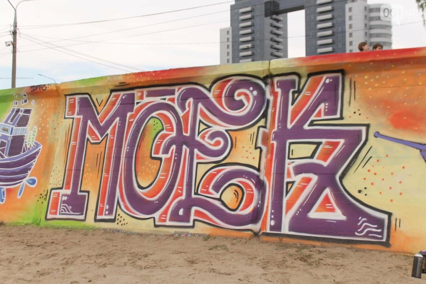 В Запорожье на пляже закончился фестиваль граффити: разрисовали 150 метров бетонной стены, – ФОТОРЕПОРТАЖ, фото-10