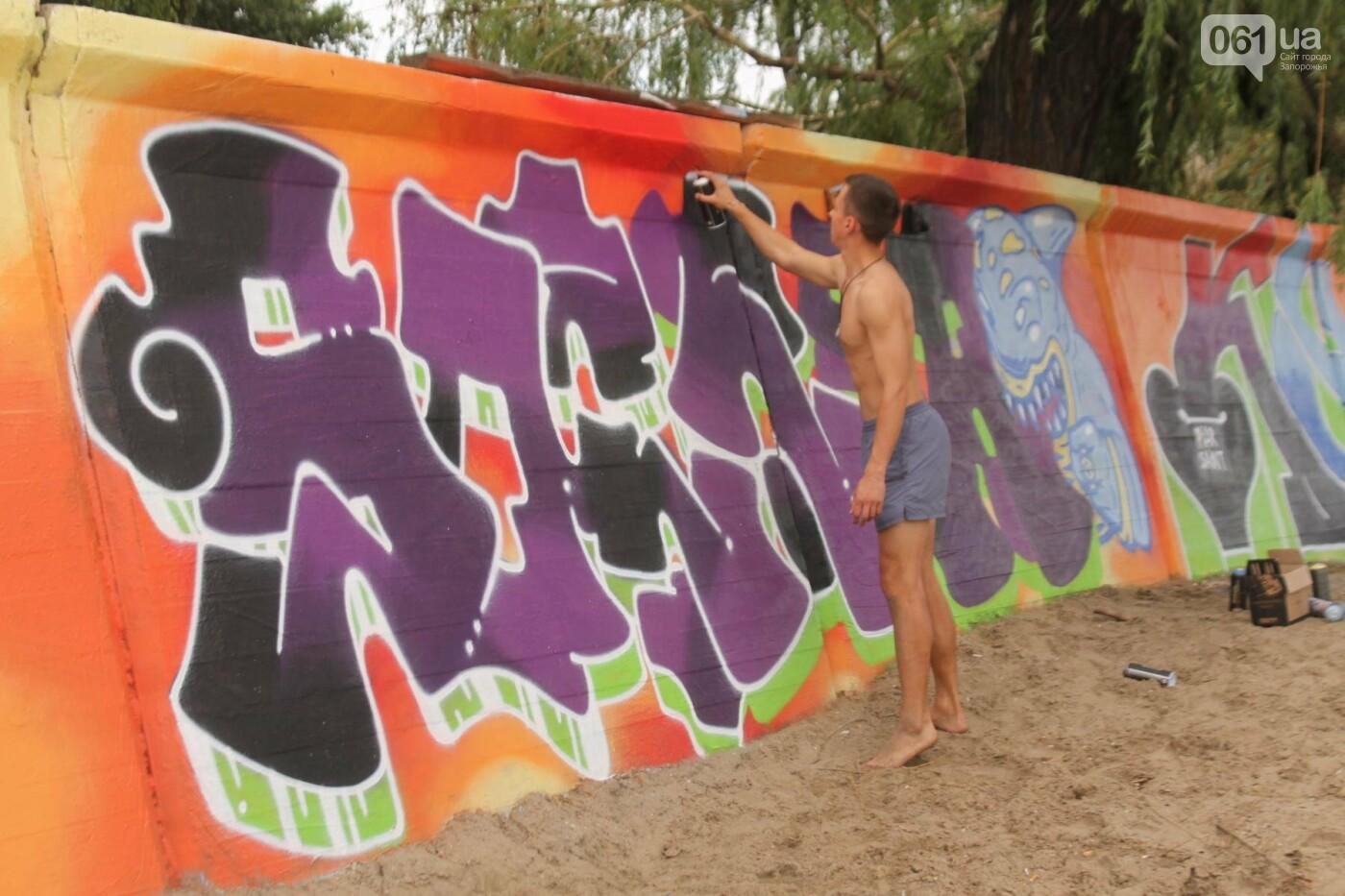 В Запорожье на пляже закончился фестиваль граффити: разрисовали 150 метров бетонной стены, – ФОТОРЕПОРТАЖ, фото-8