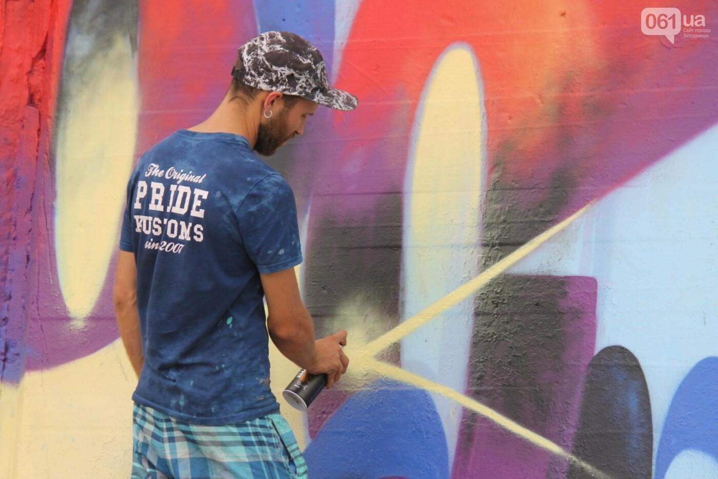 В Запорожье на пляже закончился фестиваль граффити: разрисовали 150 метров бетонной стены, – ФОТОРЕПОРТАЖ, фото-3