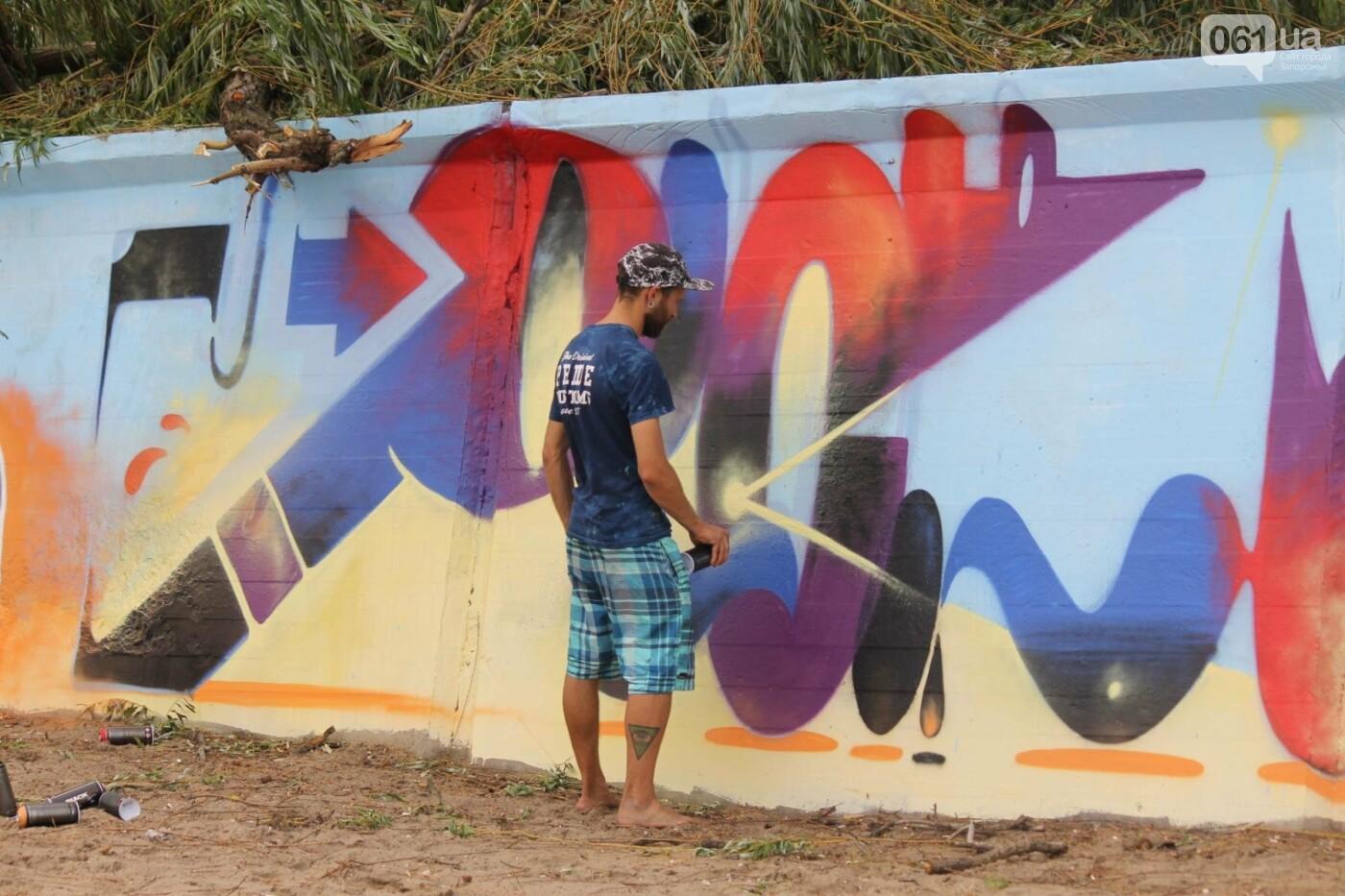 В Запорожье на пляже закончился фестиваль граффити: разрисовали 150 метров бетонной стены, – ФОТОРЕПОРТАЖ, фото-12