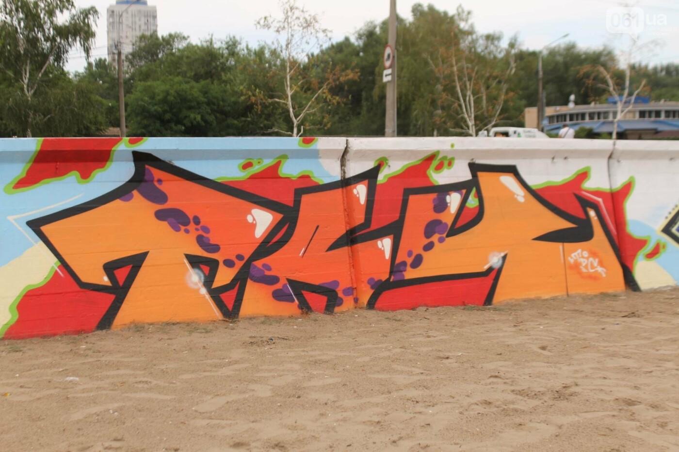 В Запорожье на пляже закончился фестиваль граффити: разрисовали 150 метров бетонной стены, – ФОТОРЕПОРТАЖ, фото-16