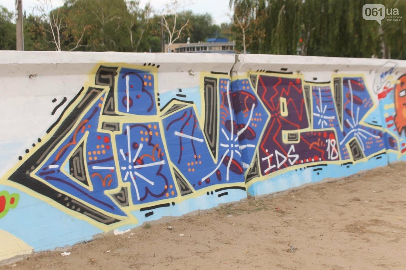 В Запорожье на пляже закончился фестиваль граффити: разрисовали 150 метров бетонной стены, – ФОТОРЕПОРТАЖ, фото-18