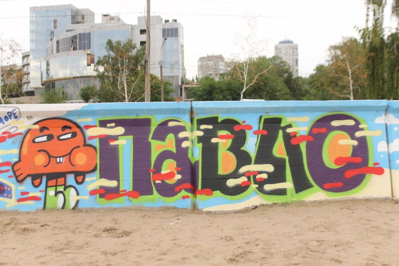 В Запорожье на пляже закончился фестиваль граффити: разрисовали 150 метров бетонной стены, – ФОТОРЕПОРТАЖ, фото-36
