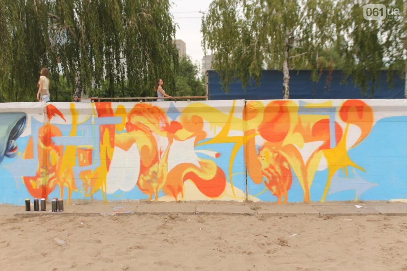 В Запорожье на пляже закончился фестиваль граффити: разрисовали 150 метров бетонной стены, – ФОТОРЕПОРТАЖ, фото-43