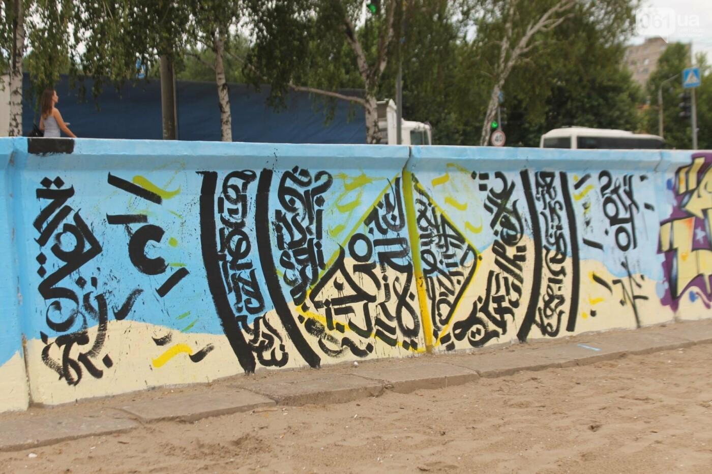 В Запорожье на пляже закончился фестиваль граффити: разрисовали 150 метров бетонной стены, – ФОТОРЕПОРТАЖ, фото-49