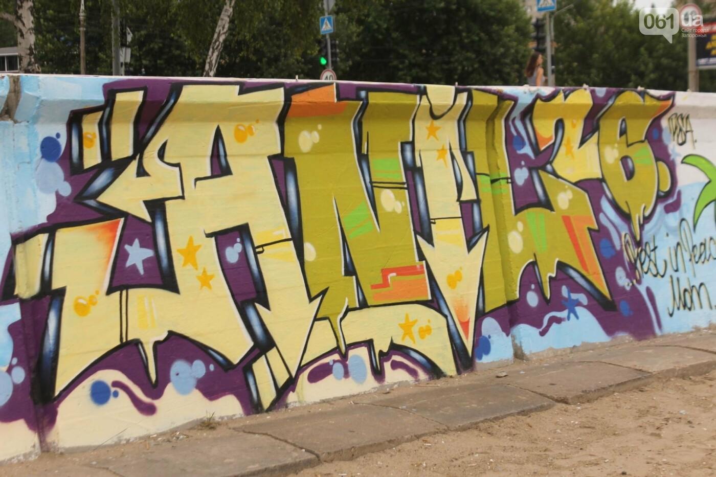 В Запорожье на пляже закончился фестиваль граффити: разрисовали 150 метров бетонной стены, – ФОТОРЕПОРТАЖ, фото-41