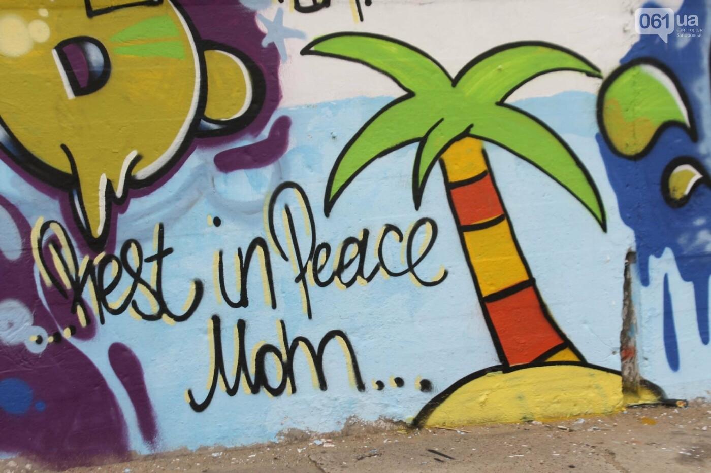 В Запорожье на пляже закончился фестиваль граффити: разрисовали 150 метров бетонной стены, – ФОТОРЕПОРТАЖ, фото-34