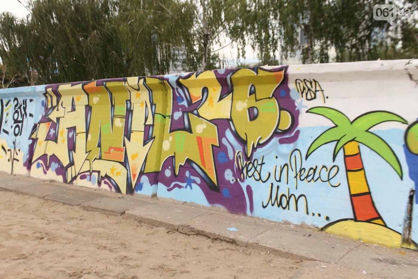 В Запорожье на пляже закончился фестиваль граффити: разрисовали 150 метров бетонной стены, – ФОТОРЕПОРТАЖ, фото-50