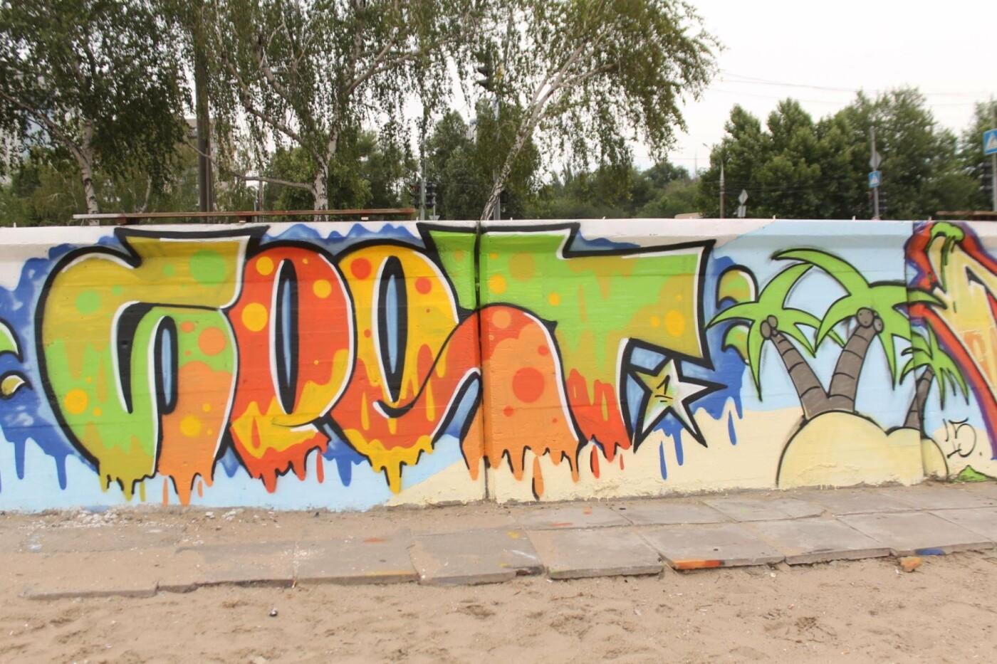 В Запорожье на пляже закончился фестиваль граффити: разрисовали 150 метров бетонной стены, – ФОТОРЕПОРТАЖ, фото-52
