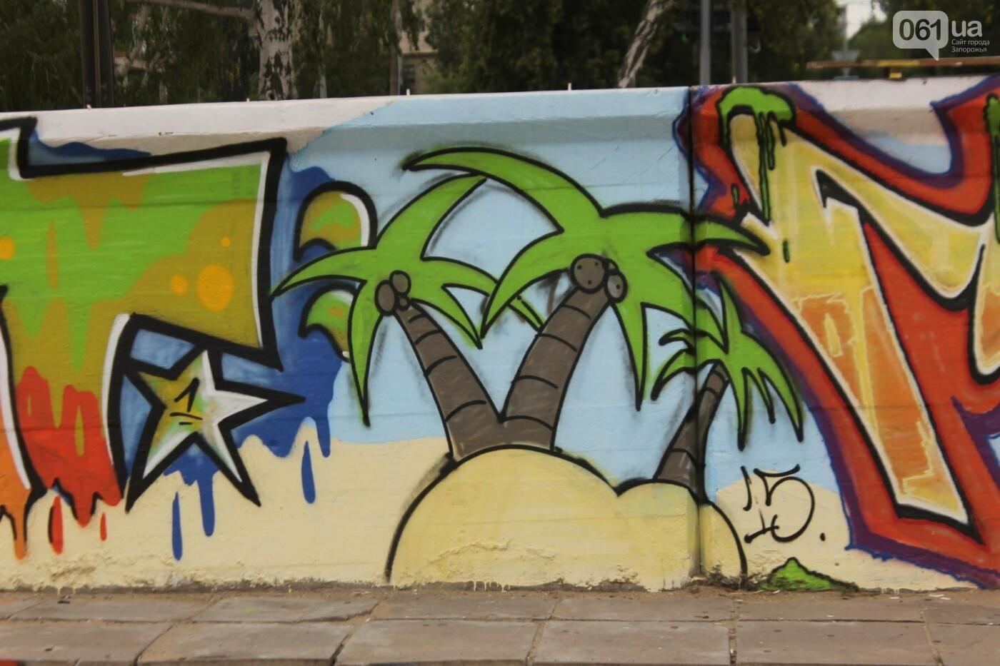 В Запорожье на пляже закончился фестиваль граффити: разрисовали 150 метров бетонной стены, – ФОТОРЕПОРТАЖ, фото-35