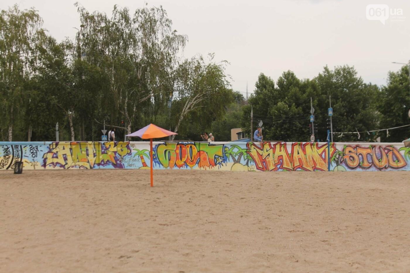В Запорожье на пляже закончился фестиваль граффити: разрисовали 150 метров бетонной стены, – ФОТОРЕПОРТАЖ, фото-45