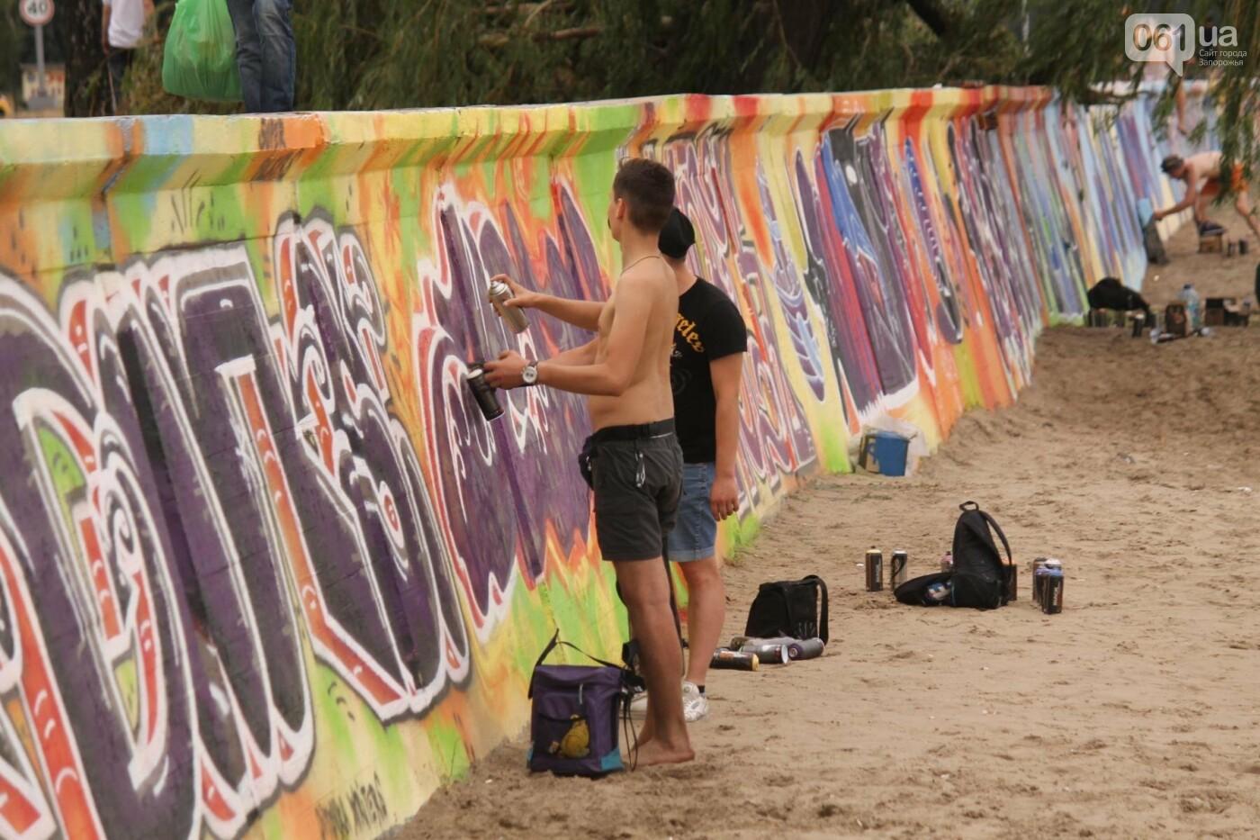 В Запорожье на пляже закончился фестиваль граффити: разрисовали 150 метров бетонной стены, – ФОТОРЕПОРТАЖ, фото-51