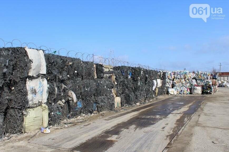Выбрасывай правильно: как в Запорожье перенимают европейский опыт сортировки мусора, фото-26