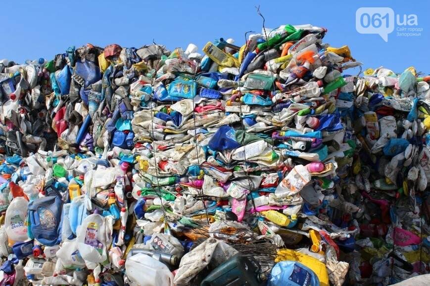 Выбрасывай правильно: как в Запорожье перенимают европейский опыт сортировки мусора, фото-20