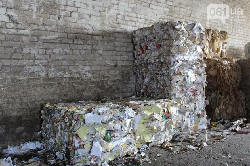 Выбрасывай правильно: как в Запорожье перенимают европейский опыт сортировки мусора, фото-27