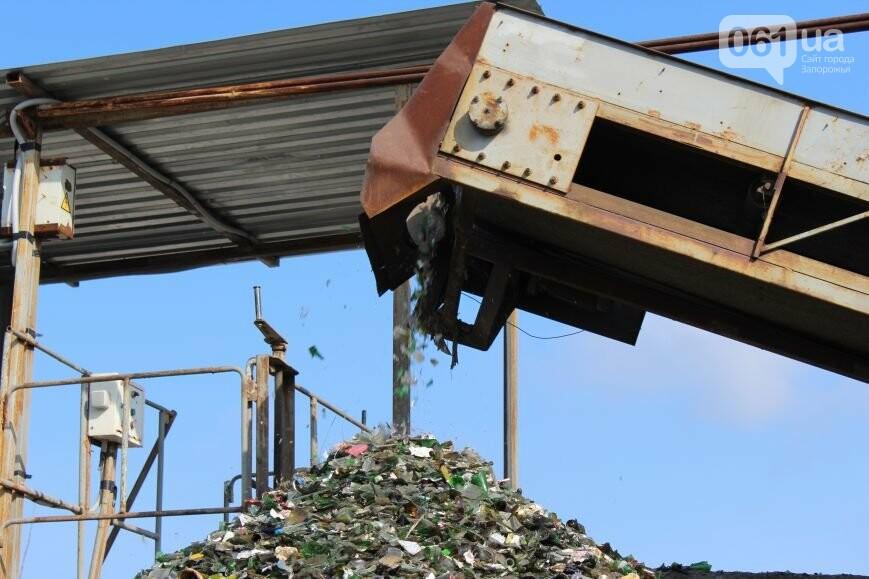 Выбрасывай правильно: как в Запорожье перенимают европейский опыт сортировки мусора, фото-24