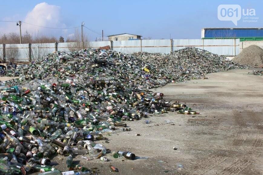 Выбрасывай правильно: как в Запорожье перенимают европейский опыт сортировки мусора, фото-22