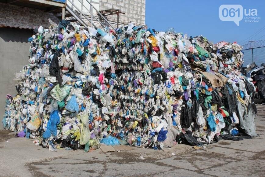 Выбрасывай правильно: как в Запорожье перенимают европейский опыт сортировки мусора, фото-21