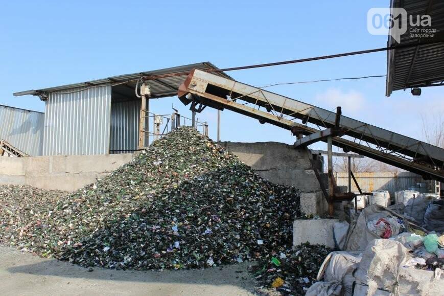 Выбрасывай правильно: как в Запорожье перенимают европейский опыт сортировки мусора, фото-23