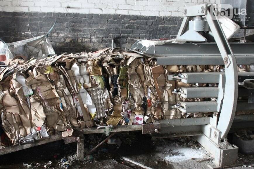 Выбрасывай правильно: как в Запорожье перенимают европейский опыт сортировки мусора, фото-17