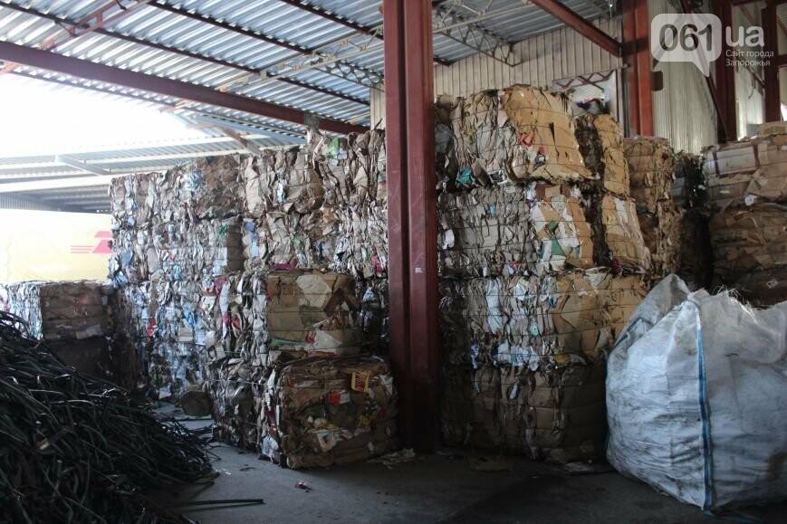 Выбрасывай правильно: как в Запорожье перенимают европейский опыт сортировки мусора, фото-18