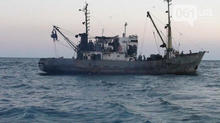 СБУ: в Бердянске под патронатом чиновников браконьеры наловили рыбы на 50 миллионов, - ФОТО, ВИДЕО, фото-4