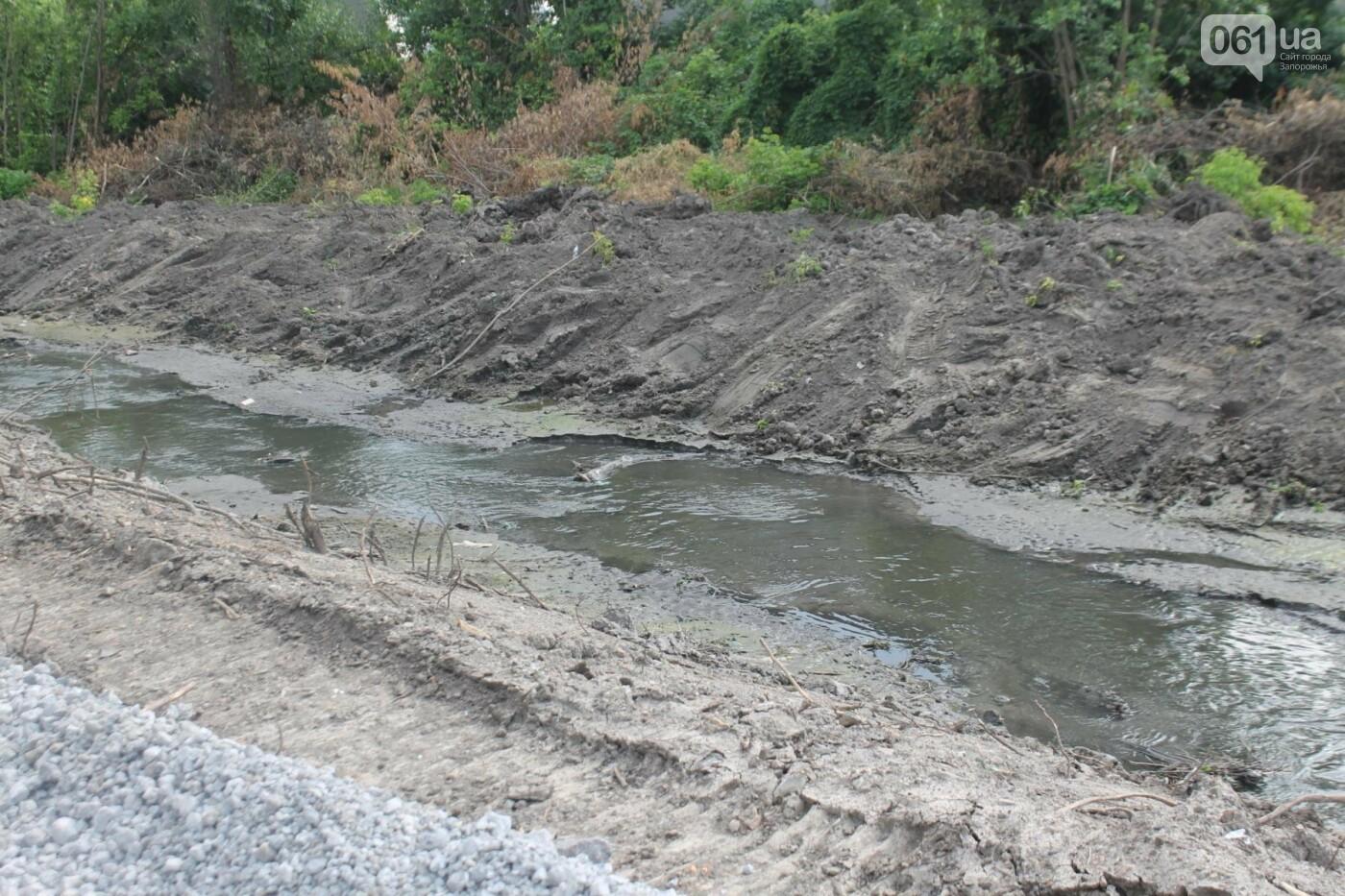 В Запорожье продолжается многомиллионная расчистка русла реки на Верхней Хортице, – ФОТОРЕПОРТАЖ, фото-12