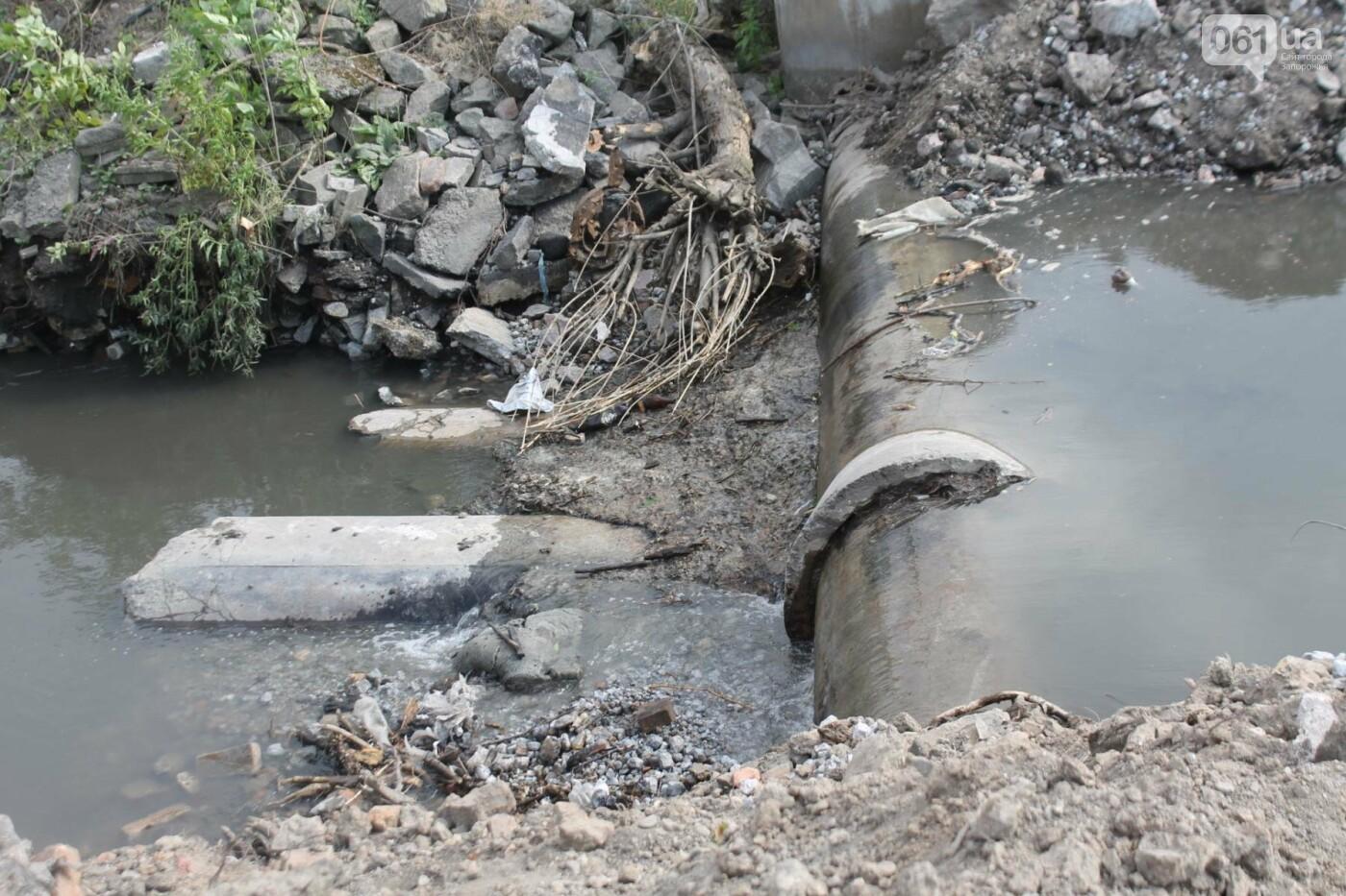 В Запорожье продолжается многомиллионная расчистка русла реки на Верхней Хортице, – ФОТОРЕПОРТАЖ, фото-9