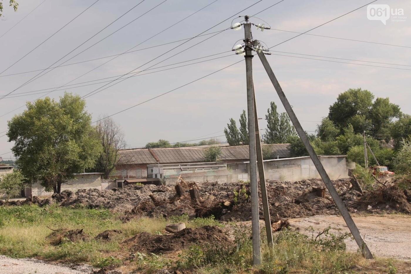 В Запорожье продолжается многомиллионная расчистка русла реки на Верхней Хортице, – ФОТОРЕПОРТАЖ, фото-11