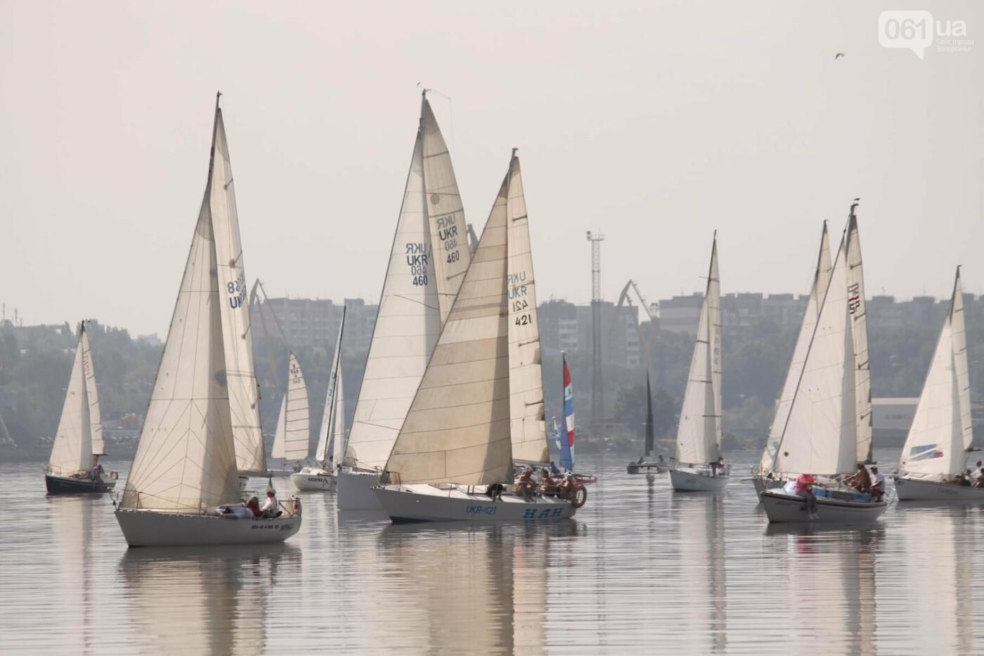 Сотни спортсменов и десятки яхт: как в Запорожье проходит парусная регата, – ФОТОРЕПОРТАЖ, фото-5